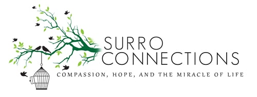 Surro Connection